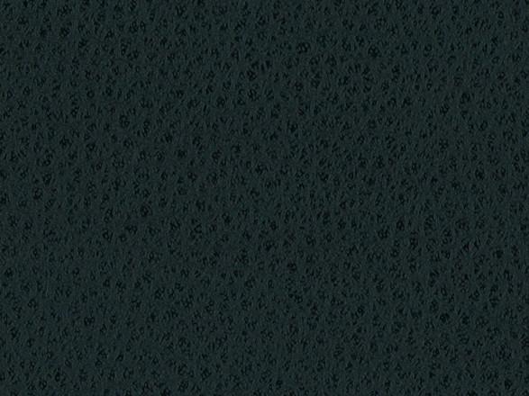 Black (2B0064)