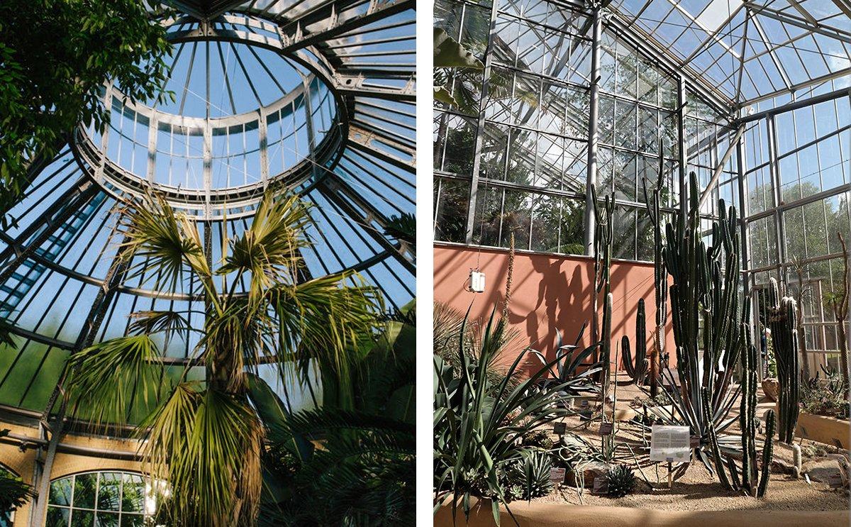Double image spread of Hortus Botanicus in Amsterdam.jpg