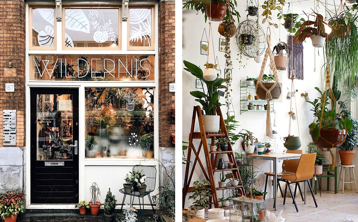 Double image spread of Wilderness Shop in Amsterdam.jpg