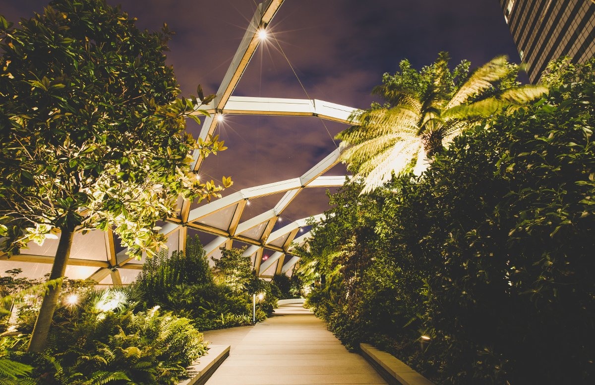 Open House London: green design in city spaces – Cross Rail Roof Garden by night.jpg