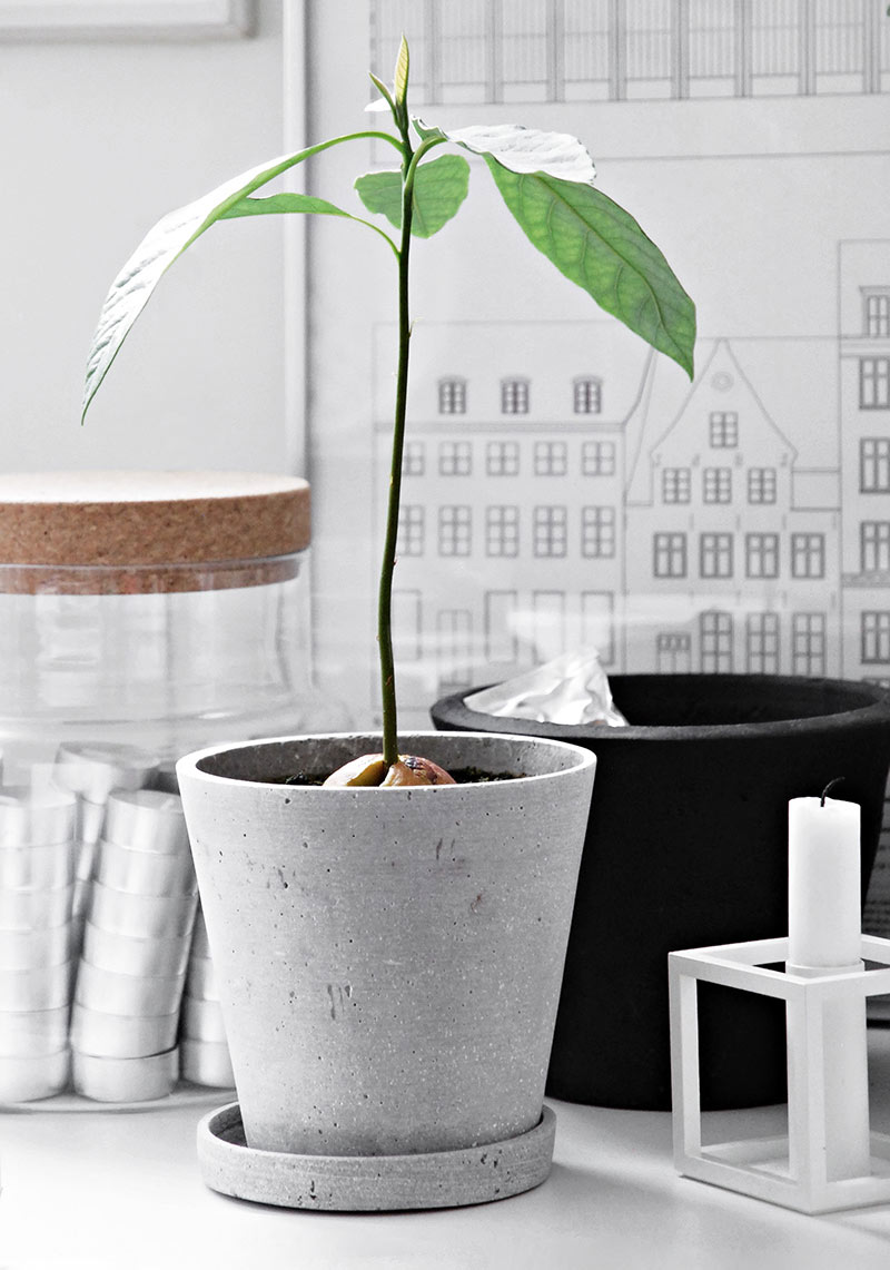 Only Deco Loves – Lagom and 'life in balance' – Hay Flowerpot with Saucer.jpg