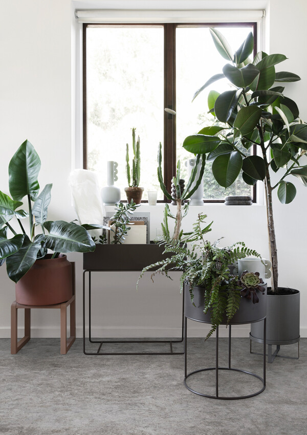 Ferm Living Planter collection with plants