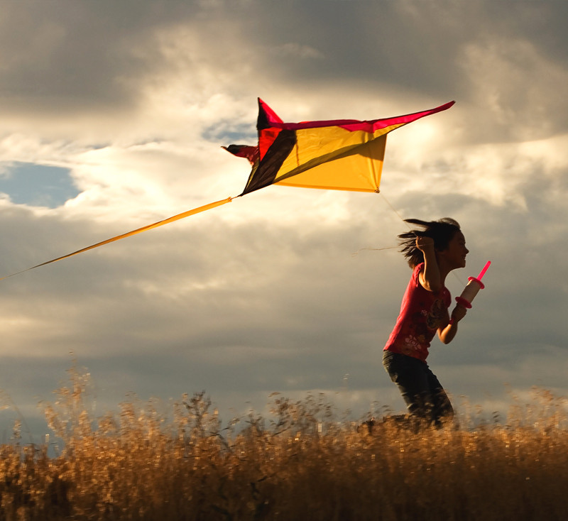 Seek, create and share joy - kite-flying.jpg