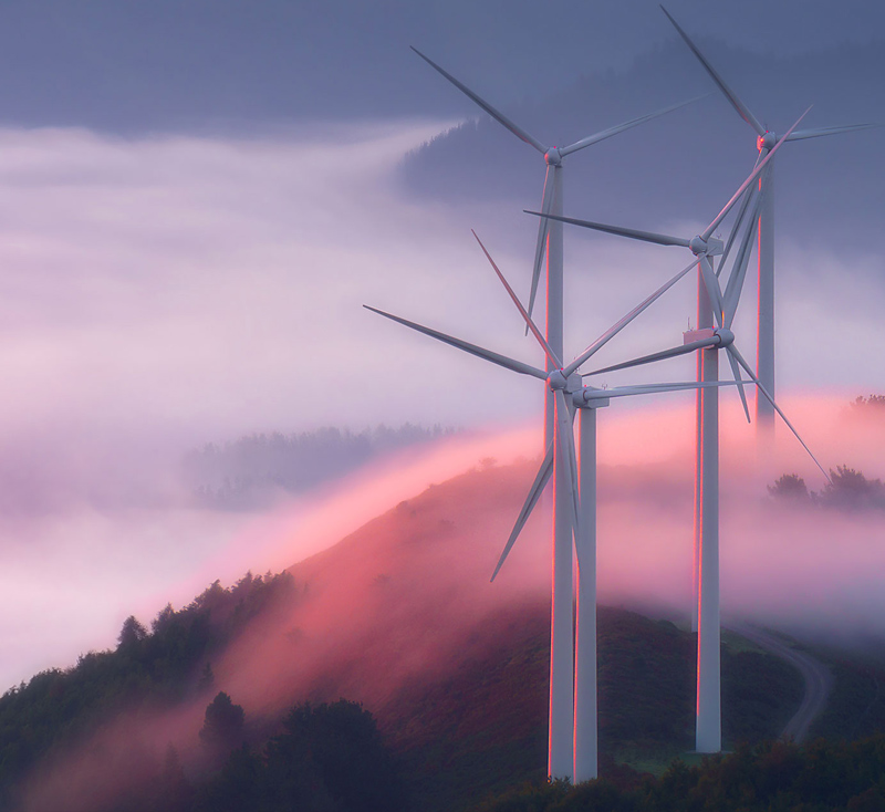 Seek, create and share joy -Wind-Turbines.jpg