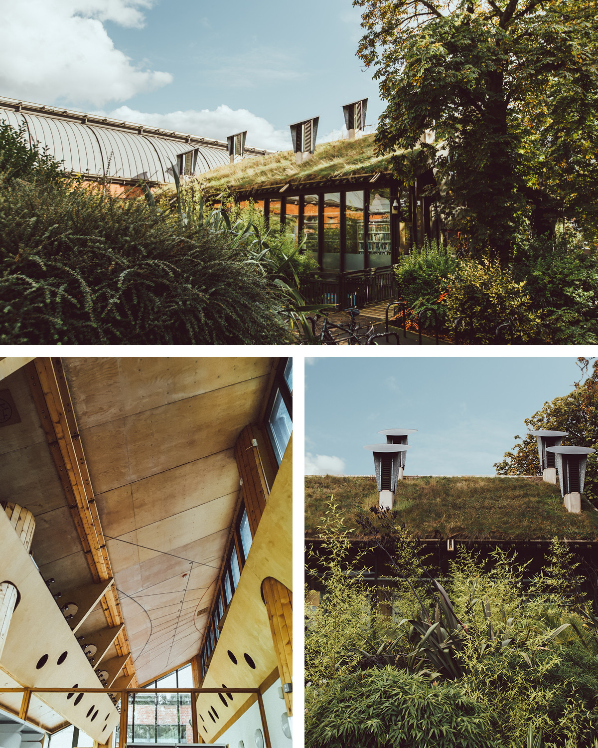 Open House London: green design in city spaces – Horniman Museum and Gardens – Eco Green Roofed Library.jpg