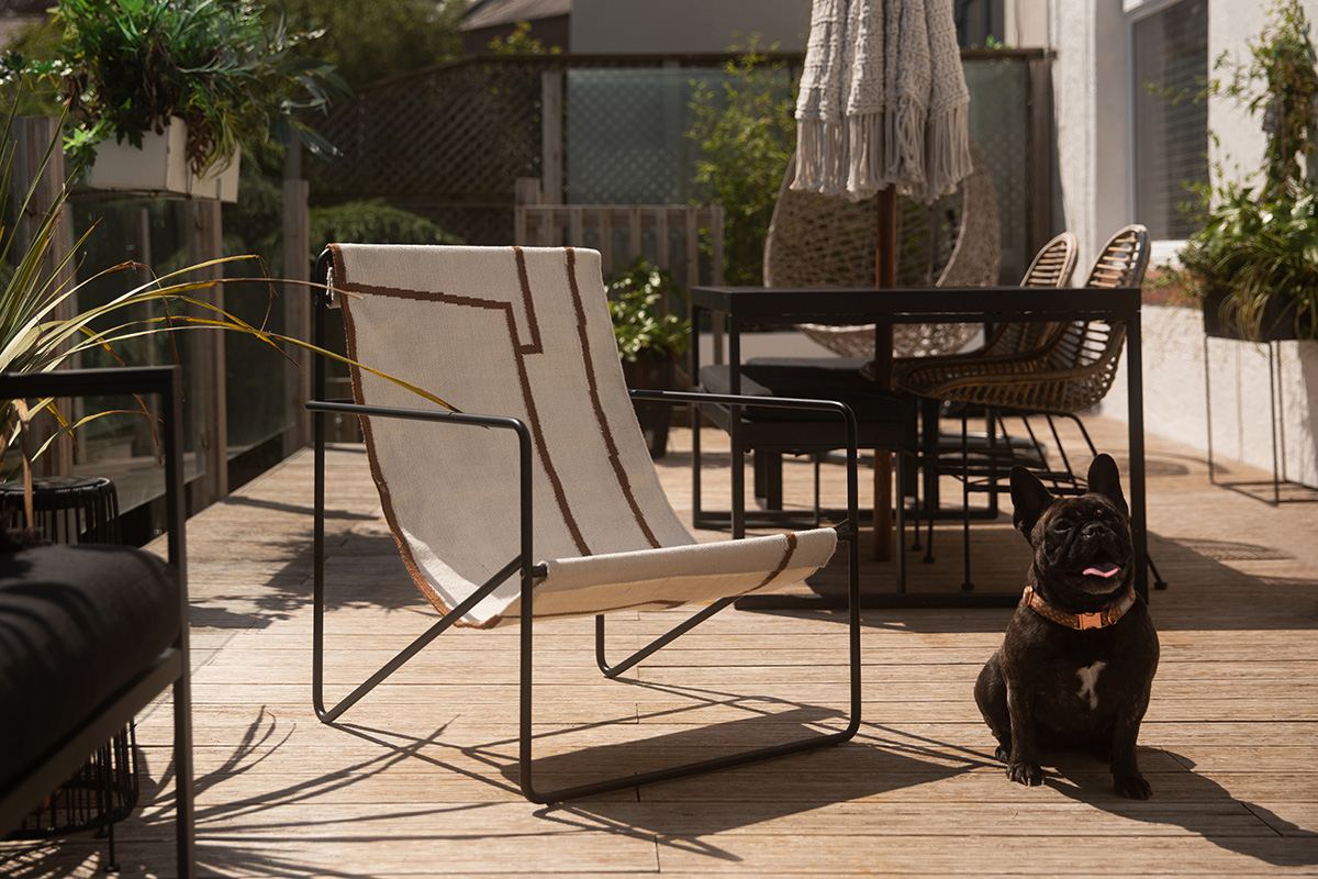 A French Bulldog sitting next to the Ferm Living Desert Chair on a sunny day