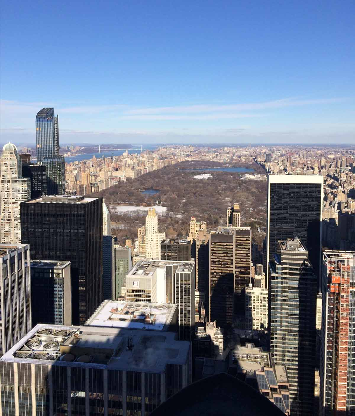 View of Manhattan and Central Park. Image by Laura Blanksby