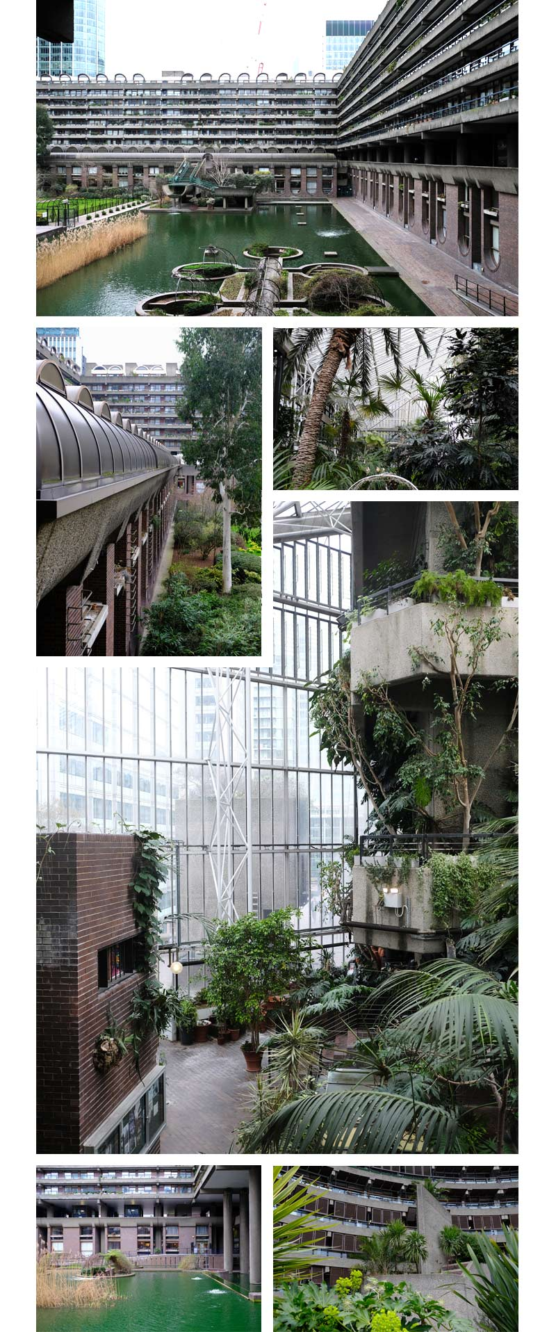 The Plants Are Back in Town – The Barbican.jpg