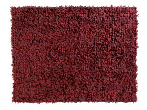 View nanimarquina Little Field of Flowers Rug - Reds