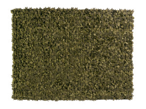 View nanimarquina Little Field of Flowers Rug - Green