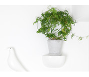 Hay Flowerpot with Saucer Grey