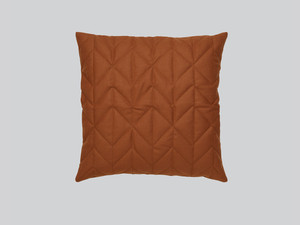 Northern Case Cushion