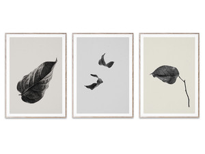 Paper Collective Sabi Leaf Collection