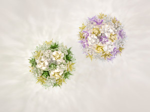 View Kartell Bloom Ceiling & Wall Light