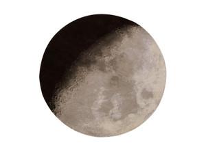 View nanimarquina Luna Rug